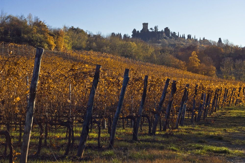 Tuscany in autumn