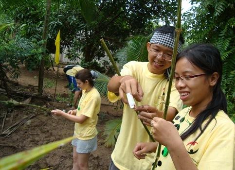 Vietnam summer service