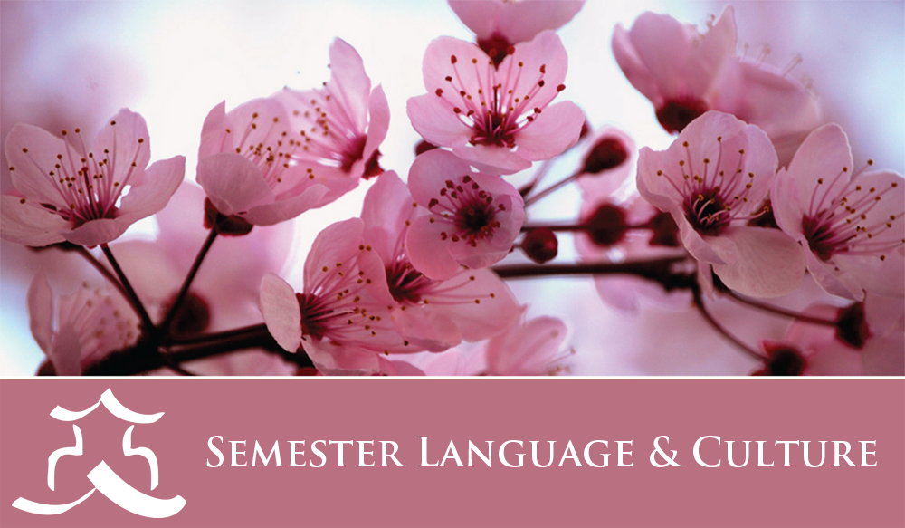 JCMU - Sem Language & Culture