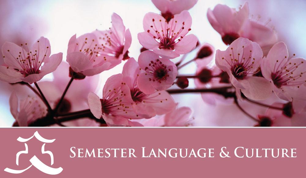 JCMU - Sem Language & Culture