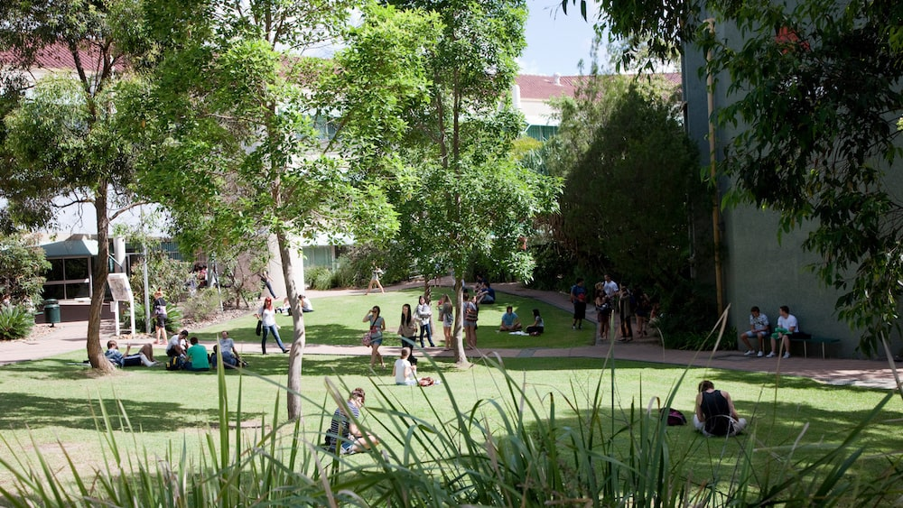 Griffith University campus