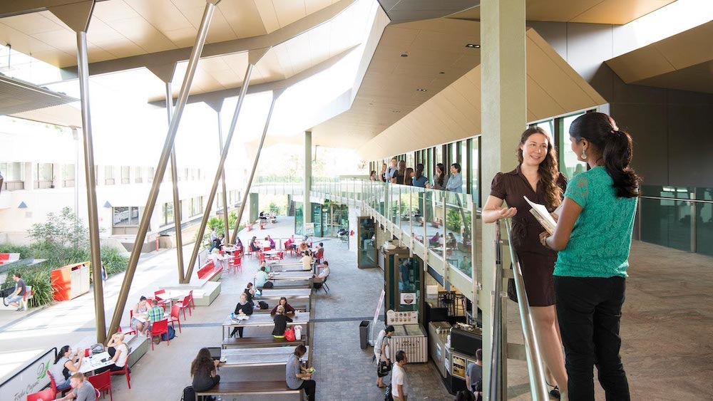 Griffith University - Brisbane campus