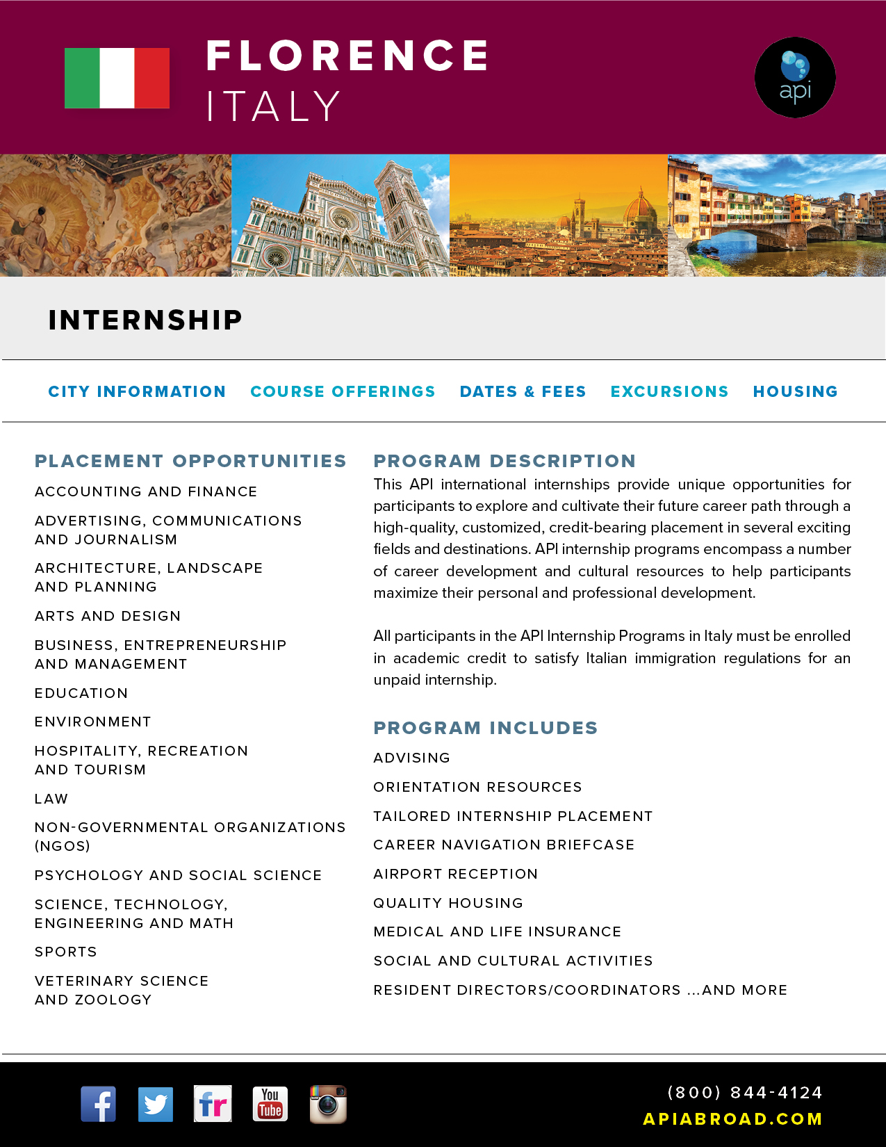 API Internship in Italy
