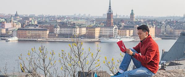 DIS.Stockholm1.TD